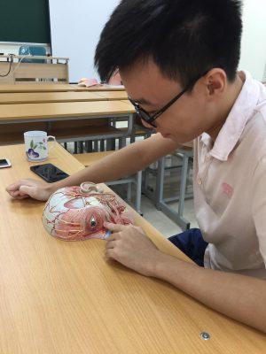 Sinh viên Khoa Y Dược Hà Nội trong giờ thực hành