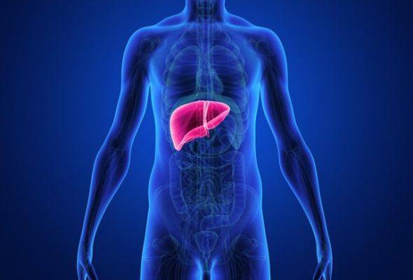 Nguyên nhân của chứng phình động mạch gan như thế nào?