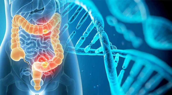 Các triệu chứng của hội chứng đa u nội tiết loại I là gì?