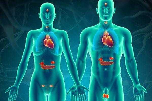 Làm thế nào để phân biệt và chẩn đoán hội chứng đa u nội tiết loại I?